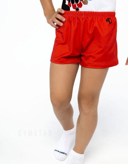Спортивные шорты мужские красные